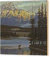 4028a, Evening Skyline, Montreal, Qc Wood Print
