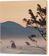 United States Wood Print