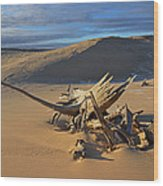 Silver Lake Sand Dunes Wood Print
