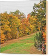 Fall Foliage In New England Wood Print