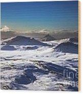 Aerial Photo Wood Print