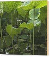 4858 Wood Print