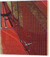 49 Mg Tc Wood Print