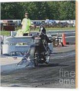 4971 Esta Safety Park 08-24-14 Wood Print