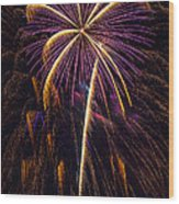 4th July #9 Wood Print