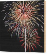 4th Of July 3 Wood Print by Marilyn Hunt
