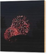 4th Of July Fireworks - 011317 Wood Print by DC Photographer