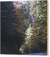 Autumn 4 Wood Print