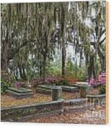 Bonaventure Cemetery Savannah Georgia Wood Print