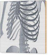 Bones Of The Torso Wood Print