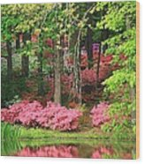 Callaway Gardens Wood Print