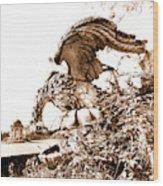 Campania Caserta Carditello Plazzo Reale Wood Print