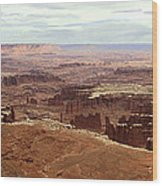 Canyonlands National Park In Utah Wood Print