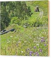 Carpathians Landscape Wood Print