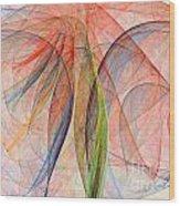 Colorful Silk Scarf Wood Print