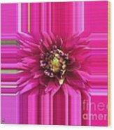Dahlia Named Andreas Dahl Wood Print