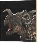 Dinosaur Einiosaurus Wood Print