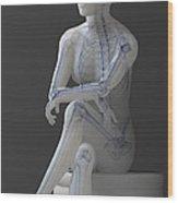 Female Anatomy Wood Print