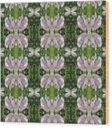 Flowers From Cherryhill Nj America Silken Sparkle Purple Tone Graphically Enhanced Innovative Patter Wood Print