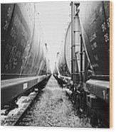 freight grain trucks on former canadian pacific railway now great sandhills railway through leader S Wood Print