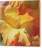 Gladiolus Named Halloween Wood Print