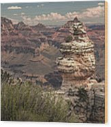 Grand Canyon Wood Print by Cindy Rubin
