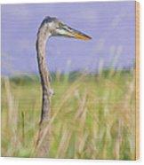 Great Blue Heron On The Prairie Wood Print