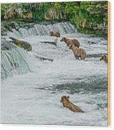 5 Grizzlies Wood Print