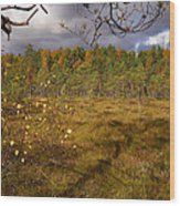 Isosuo Wood Print