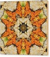 Kaleidoscope Vegetable Sushi Wood Print