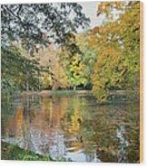 Lazienki Park In Warsaw Wood Print