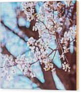 New Jersey Spring Wood Print