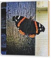 Phoenician Butterfly Wood Print