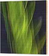 Plant Abstract Wood Print