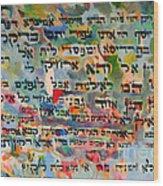 Rabba Bar Rav Hanan Wood Print