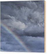 Rainbow Over Pasture Field Wood Print