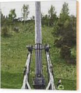 Replica Of Wooden Trebuchet On The Path Leading To The Urquhart Castle Wood Print
