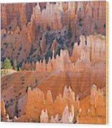 Sandstone Hoodoos In Bryce Canyon  Wood Print