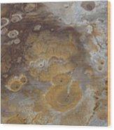 Sinkholes In Southern Dead Sea Area Wood Print