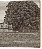 5 Star Barns Monochrome Wood Print