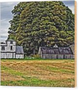 5 Star Barns Wood Print
