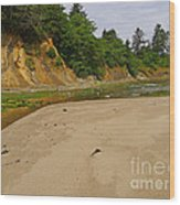 Sunset Bay State Park Wood Print by Gail Peters