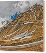 Transfagarasan Highway Wood Print by Gabriela Insuratelu