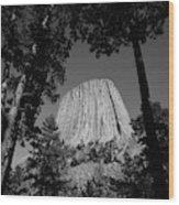 Usa, Wyoming, Hulett, Devil's Tower Wood Print