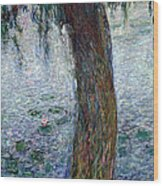 Waterlilies Morning With Weeping Willows Wood Print