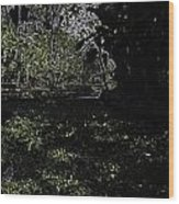 Weeds And Plants In A Coastal Saltwater Creek Wood Print