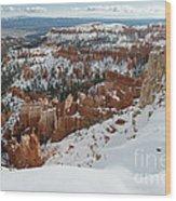 Winter Scene, Bryce Canyon National Park Wood Print