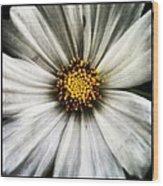 50 Shades Of Flower Wood Print