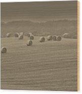 50 Shades Of Hay Wood Print