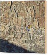 Rock Climb Wood Print